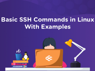 Basic SSH Commands