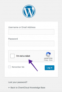Google Captcha - WordPress Login